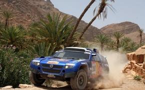Картинка пальмы, скалы, Volkswagen, Touareg Race