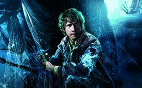 Обои Bilbo, постер, Martin Freeman, Мартин Фриман, Хоббит: Пустошь Смауга, The Hobbit: The Desolation of Smaug, ...