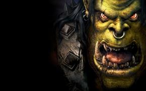 Картинка пасть, Warcraft 3, военное ремесло, лицо, зелёный, варкрафт 3, слюни, кольцо, клыки, блеск, язык, орки, ...
