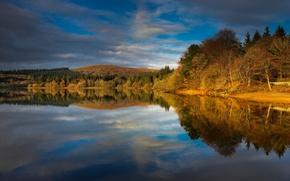 Картинка осень, деревья, озеро, Англия
