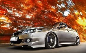 Обои Honda, Скоростья, Оранжевый, Листья