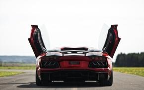 Картинка дорога, попа, двери, суперкар, Lamborghini Aventador