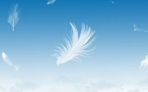 Обои небо, перо, голубой, легкость