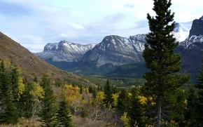 Картинка деревья, пейзаж, горы, природа, парк, фото, США, Glacier Montana