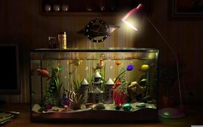Картинка рыбки, замок, часы, лампа, аквариум