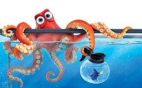Картинка мультфильм, аквариум, рыбка, осьминог, Дори, Finding Dory, В поисках Дори