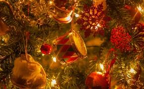 Картинка украшения, огни, Рождественская елка