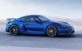Картинка Porsche, Cayman, порше, GT4, 2015, 981C, кайман