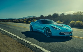 Обои chevrolet, corvette, c7, stingray, forgatio, blue, front, car