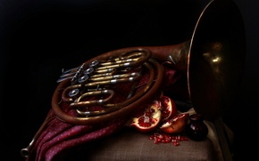 Картинка музыка, French horn, Pomegranates