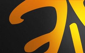 Картинка Логотип, Game, Team, Minimalism, CSGO, Counter-Strike: Global Offensive, CS:GO, Fnatic, vent designs, Esports
