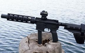 Картинка gun, weapon, nature, wood, lake, 9mm, rifle, AR-15, ordnance, AR 15, AR15, 5.56, stump, carabine, …