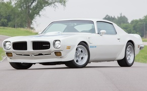 Картинка Pontiac, Firebird, Trans
