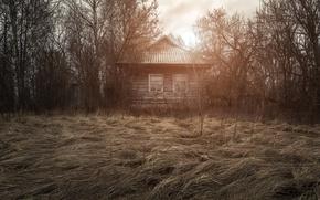 Картинка поле, дом, Родина