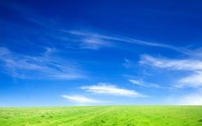 Обои небо, трава, поле, пейзажи, природа