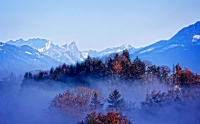 Картинка осень, лес, снег, деревья, горы, туман