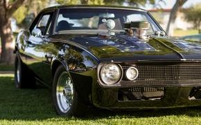 Картинка ретро, классика, Мускул кар, передок, Camaro, Chevrolet