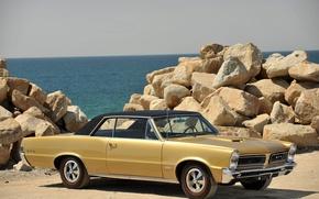 Картинка Pontiac, GTO, Muscle Car