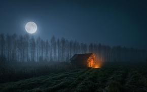 Обои небо, свет, ночь, дом, луна