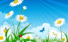Картинка Солнце, Небо, Трава, Ромашки, Насекомые