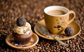 Картинка кофе, конфеты, зёрна кофе, кексик