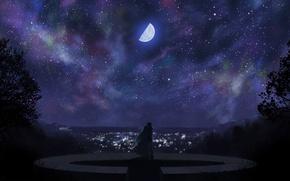 Картинка звезды, любовь, ночь, город, огни, луна, месяц, двое
