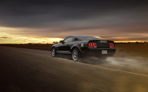 Картинка Car, Muscle, Aristo, GT 350, Rear, Grey, Speed, Collection, Road, Mustang, Ford