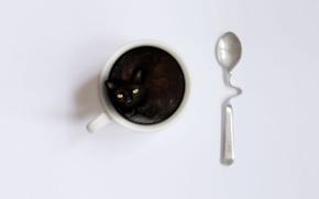 Картинка котенок, ложка, чашка