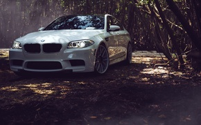 Картинка BMW, Листья, БМВ, White, Tuning, F10