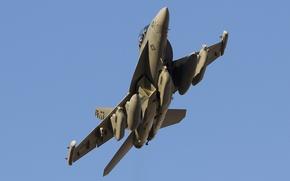 Картинка оружие, самолёт, THUNDER42 VAQ-135 Black Ravens F-18G