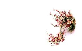 Картинка цветы, птица, минимализм, весна, Восток, сакура, арт