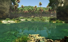Картинка озеро, пальмы, берег, камыш, jungle pool