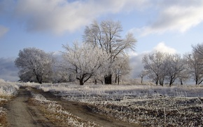 Обои поле, дорога, иней, природа