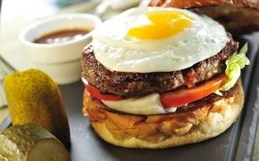 Обои Fast food, котлеты, булка, фаст фуд, сэндвич, помидор, яйцо, гамбургер