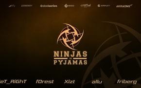 Картинка games, team, pro, pro team, NIP, ninjas in pyjamas