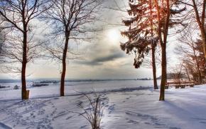 Картинка зима, поле, небо, облака, снег, деревья, тучи