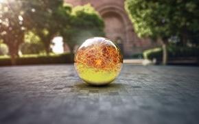 Картинка макро, стеклянный шар, рендер, dragon ball