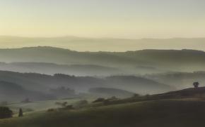 Обои холмы, вид, утро, туман, деревья