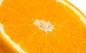 Обои макро, цитрус, апельсин, оранжевый, фрукт