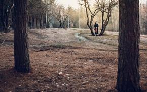 Картинка лес, девушка, одиночество, альт