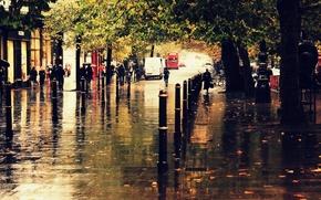 Обои осень, город, дождь, улица