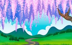 Обои глициния, тропинка, холмы