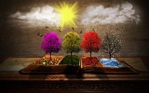 Картинка summer, rain, trees, winter, autumn, clouds, snow, birds, sun, spring, book, seasons