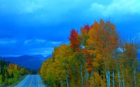 Картинка дорога, осень, лес, небо, деревья, тучи