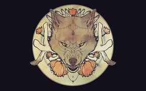 Картинка морда, волк, пасть, оскал