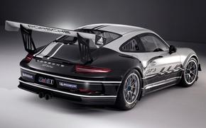 Картинка 911, Porsche, 2013, GT3 Cup