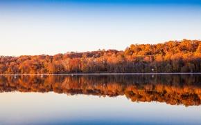 Обои озеро, берег озера, отражение, зеркало, небо, деревья
