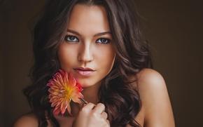 Картинка цветок, девушка, красота, шатенка