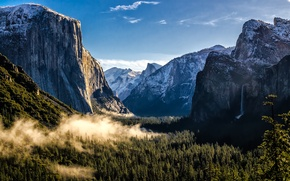 Картинка лес, горы, USA, США, Национальный парк Йосемити, Yosemite National Park, State California, Штат Калифорния