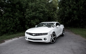 Картинка Chevrolet, Camaro, White, Wrapped, Stain